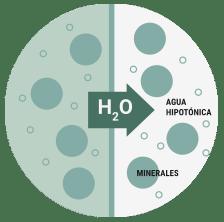 Agua hipotónica