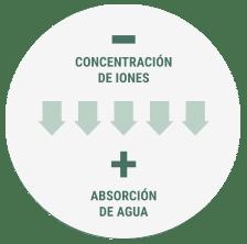 Concentración de iones